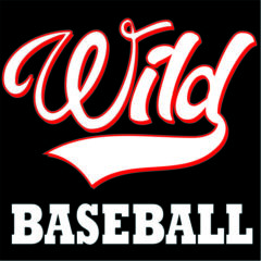 Wild Baseball